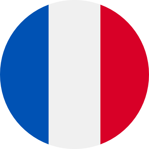 Translation to french with french flag