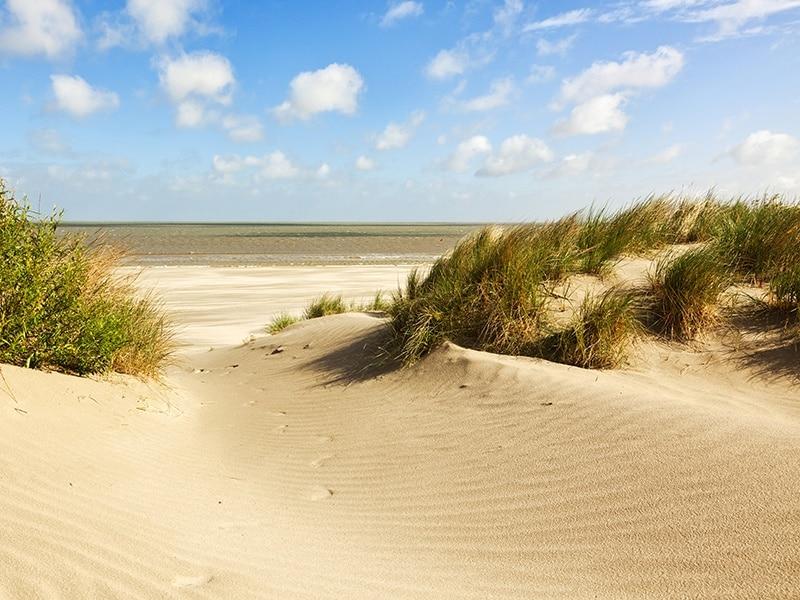 बेल्जियम में ट्रेन से समुद्र तट की छुट्टियों, समुद्र तट की रेत