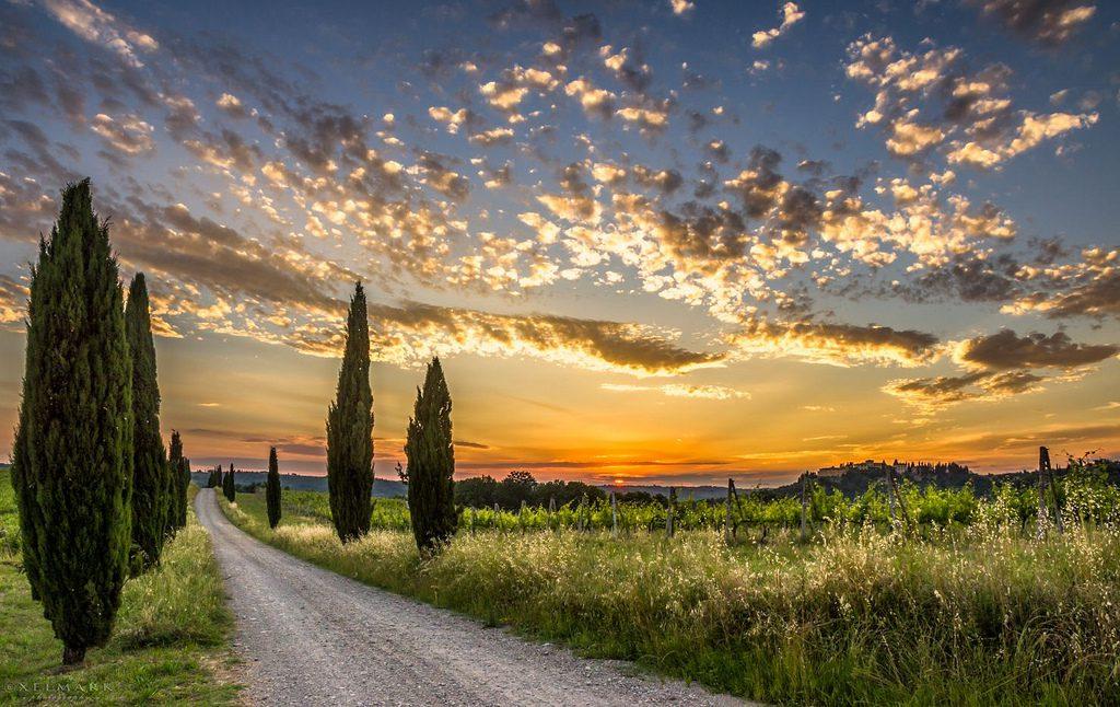 Tuscany mea i waena o ka maikaʻi loa kona hua lole holo ma Europe