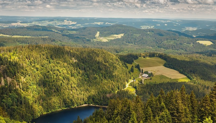 The Black Forest from above