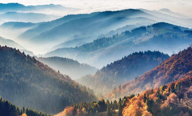 El Bosc Negre i com arribar al bloc de tren