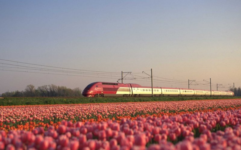 trains are the quickest mode of travel