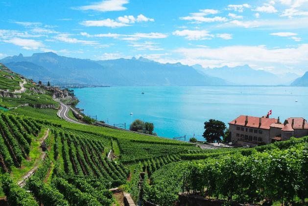Lavaux Switzerland featuring in Best Wineries In Europe
