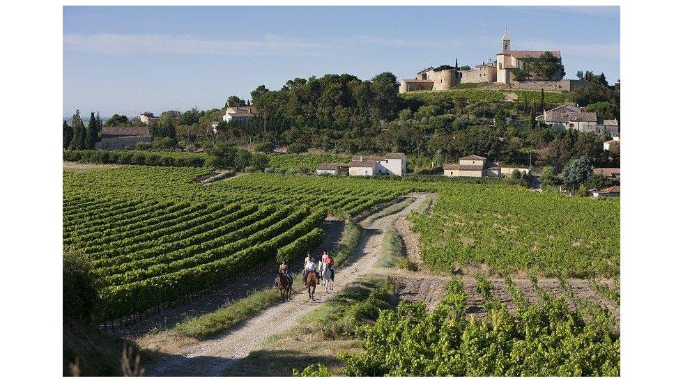 Rhone Valley is in the Best wineries in Europe